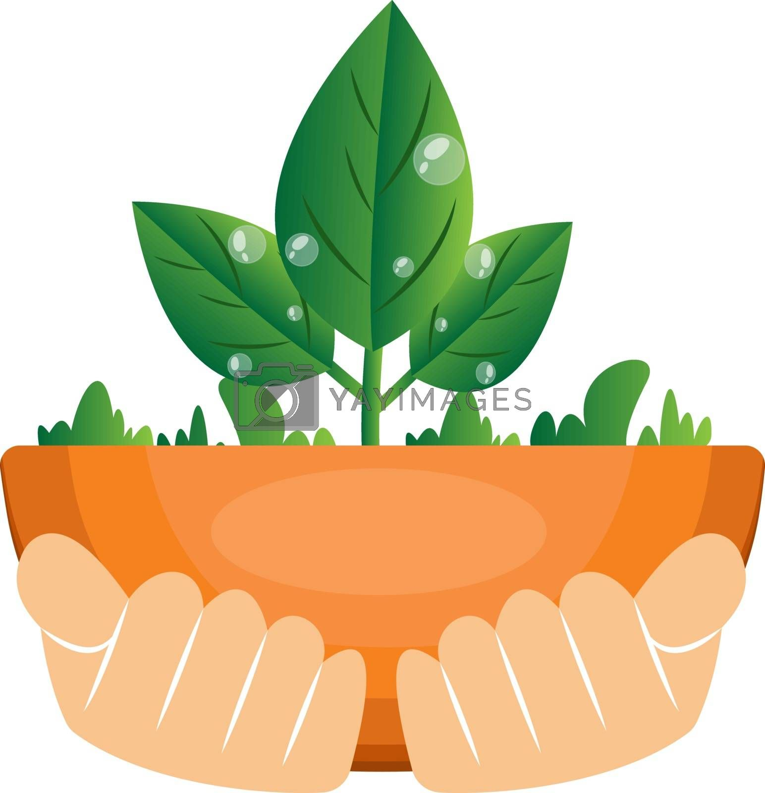 Royalty free image of Illustration of hands holding plants illustration vector on whit by Morphart