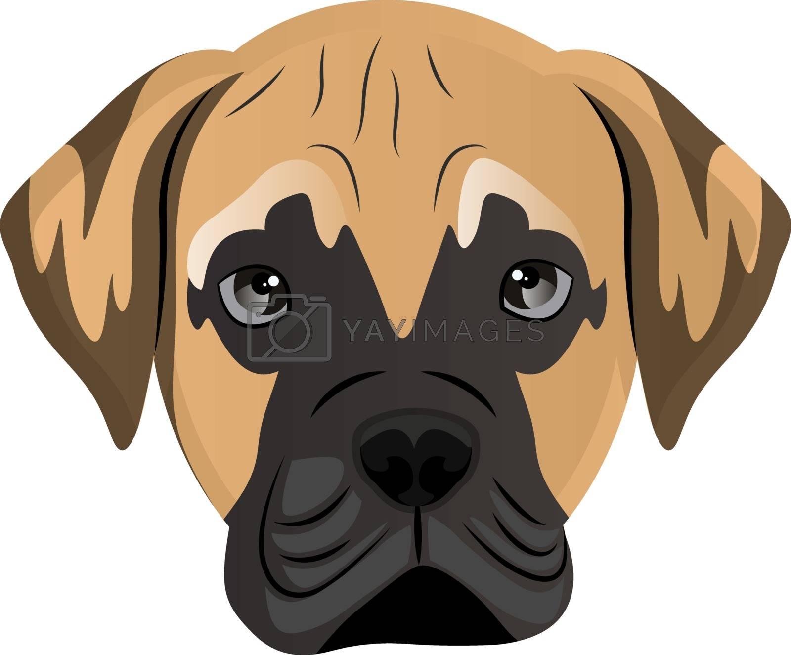 Royalty free image of Mastiff illustration vector on white background by Morphart