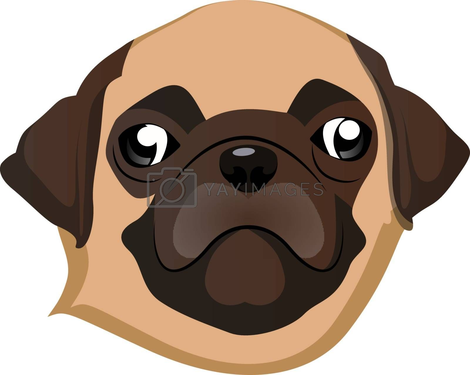 Royalty free image of Pug illustration vector on white background by Morphart