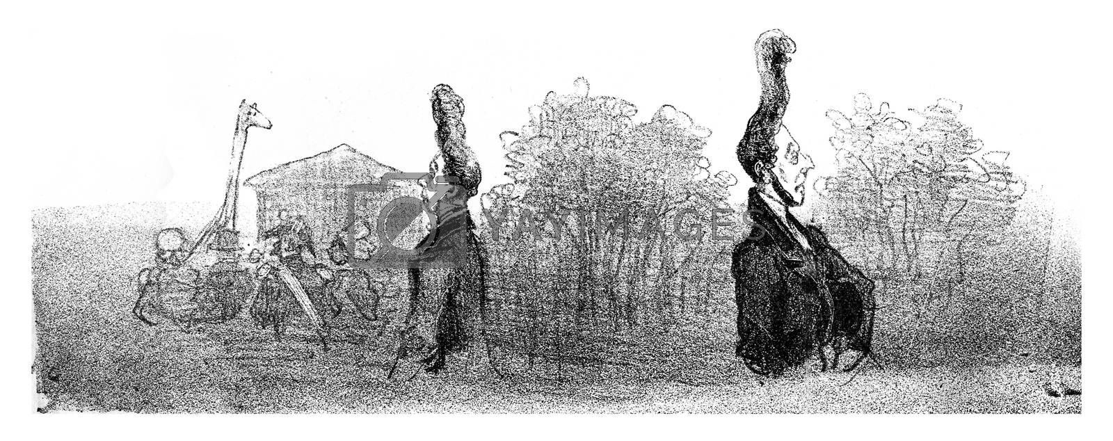 Giraffe hairstyle, vintage engraved illustration. From The Tortures of Fashion.