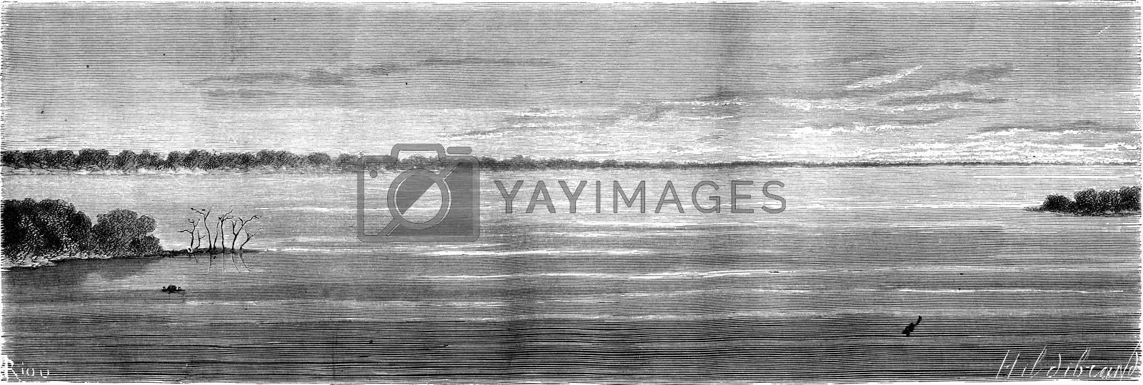 Confluence of the Ucayali and Maranon, vintage engraved illustration. Le Tour du Monde, Travel Journal, (1865).