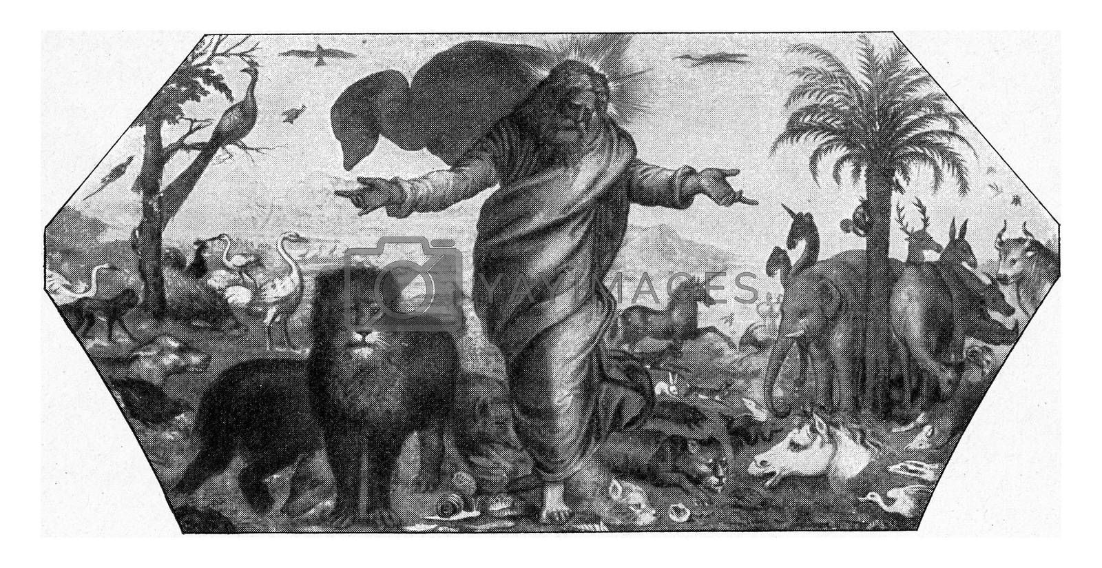 The creation of animals, vintage engraved illustration. From the Universe and Humanity, 1910.