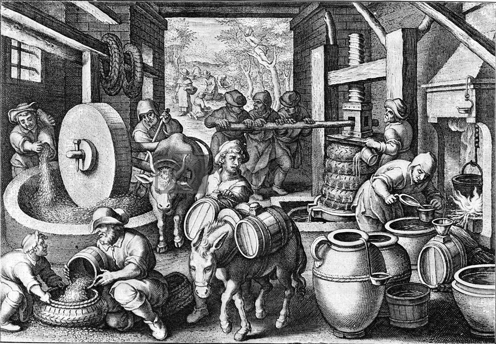Manufacture of olive oil around the year, vintage engraving. by Morphart