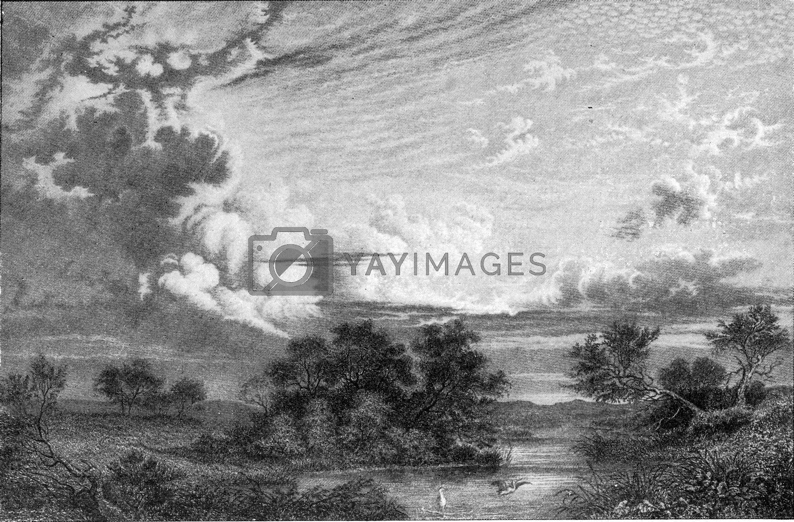 Royalty free image of Main forms of clouds, vintage engraving. by Morphart