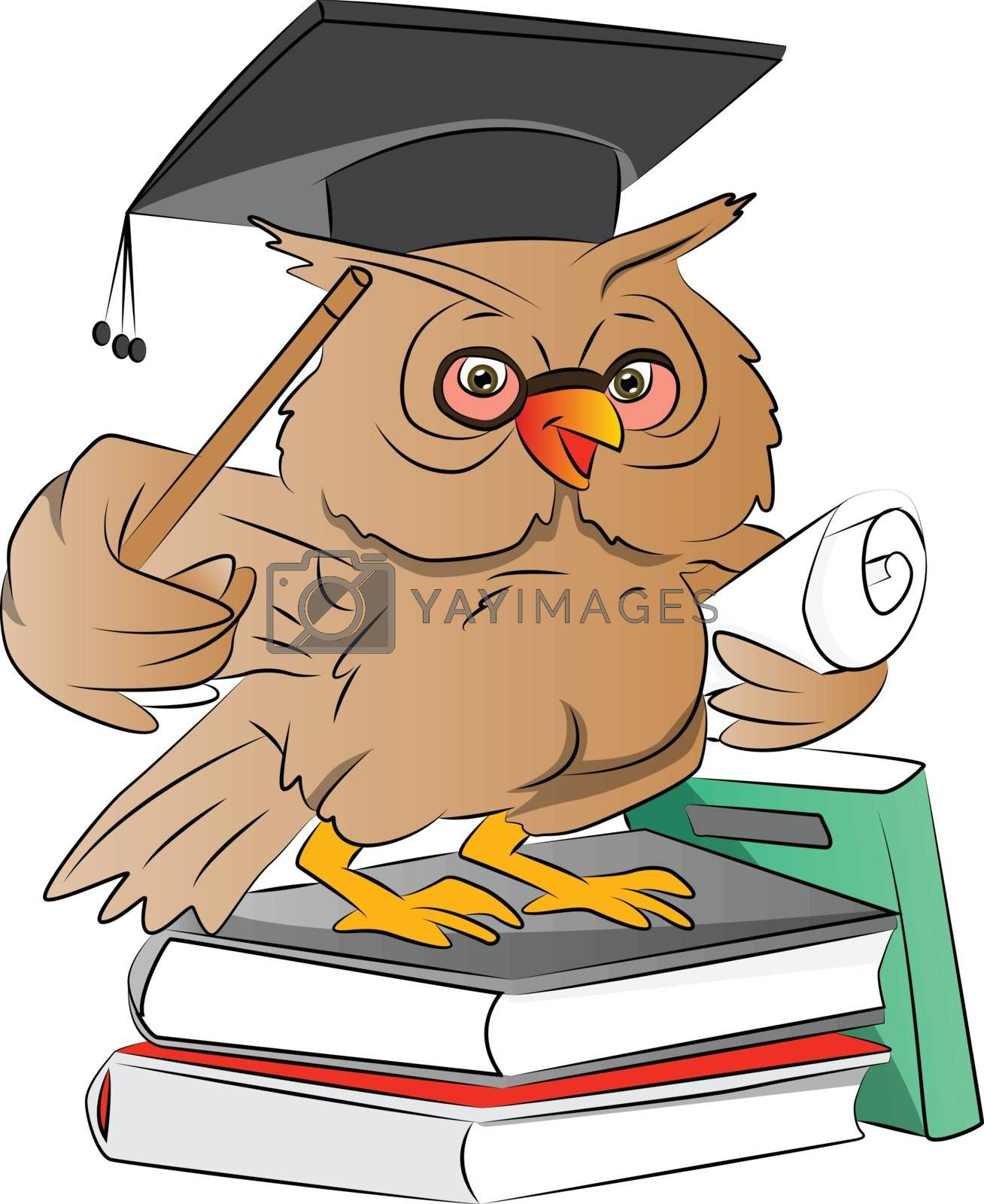 Smart Owl Graduate with Cap Books and Diploma , vector illustration