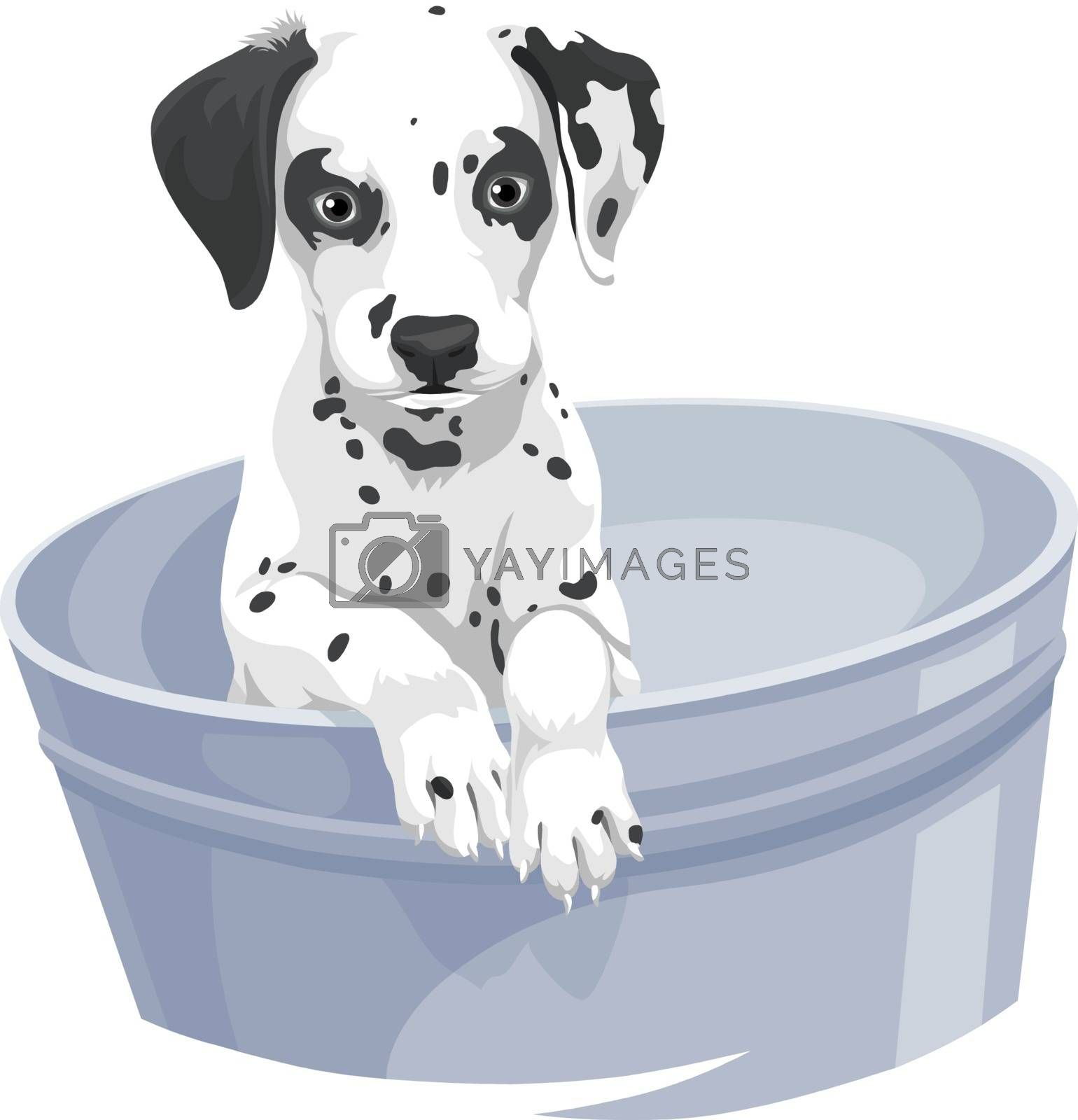 Vector illustration of dalmation dog in bathtub.