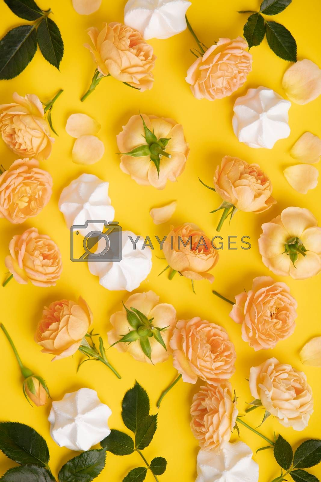 Floral pattern with pink roses and merengues on yellow background, flat lay, vertical composition. Food texture, background and wallpaper