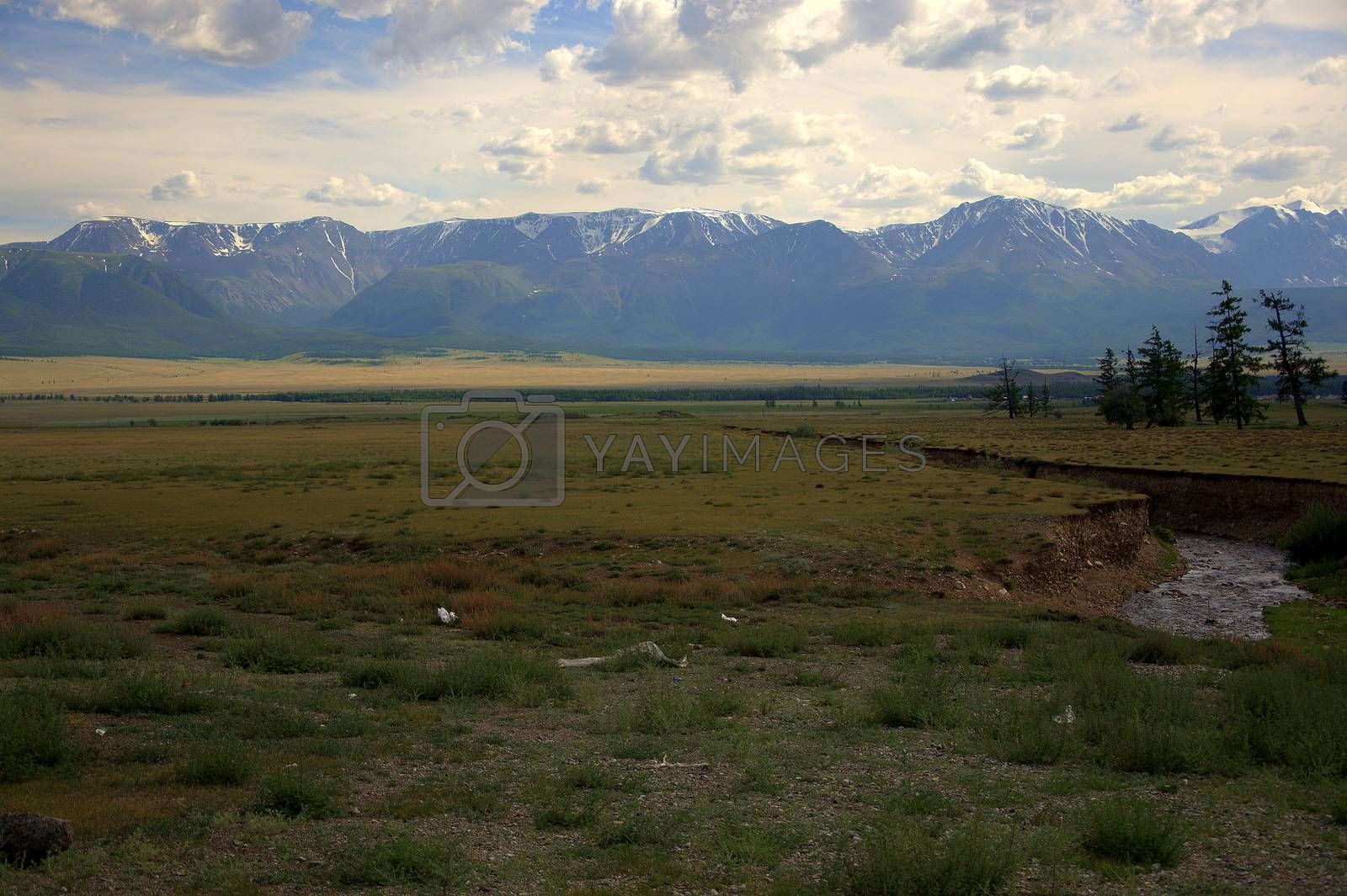 A small river flowing in a canyon across the steppe to meet the snow-capped mountain peaks. Altai, Siberia, Russia.