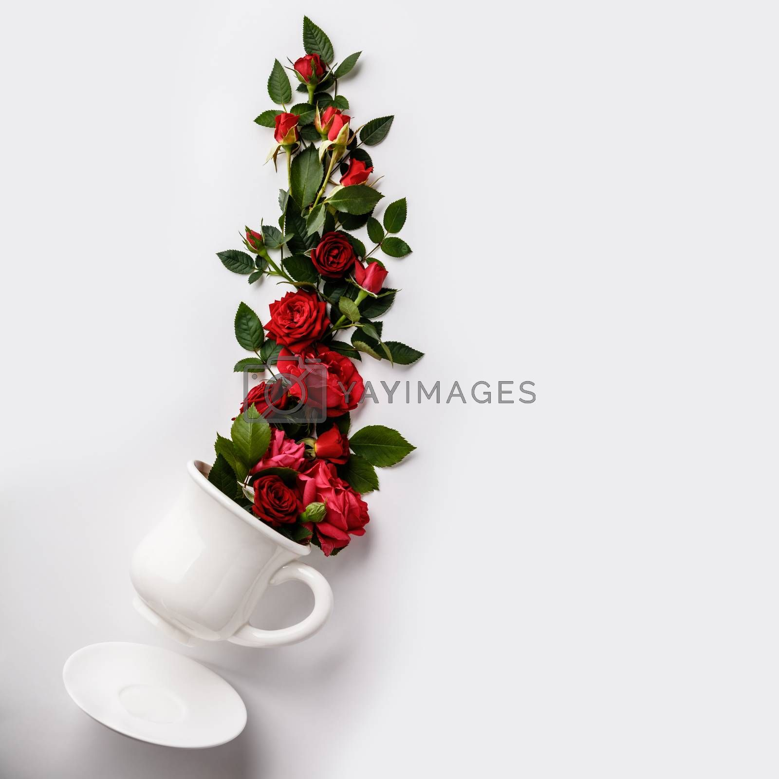 Flowers composition. Creative layout made of coffee or tea cup with red roses on white background