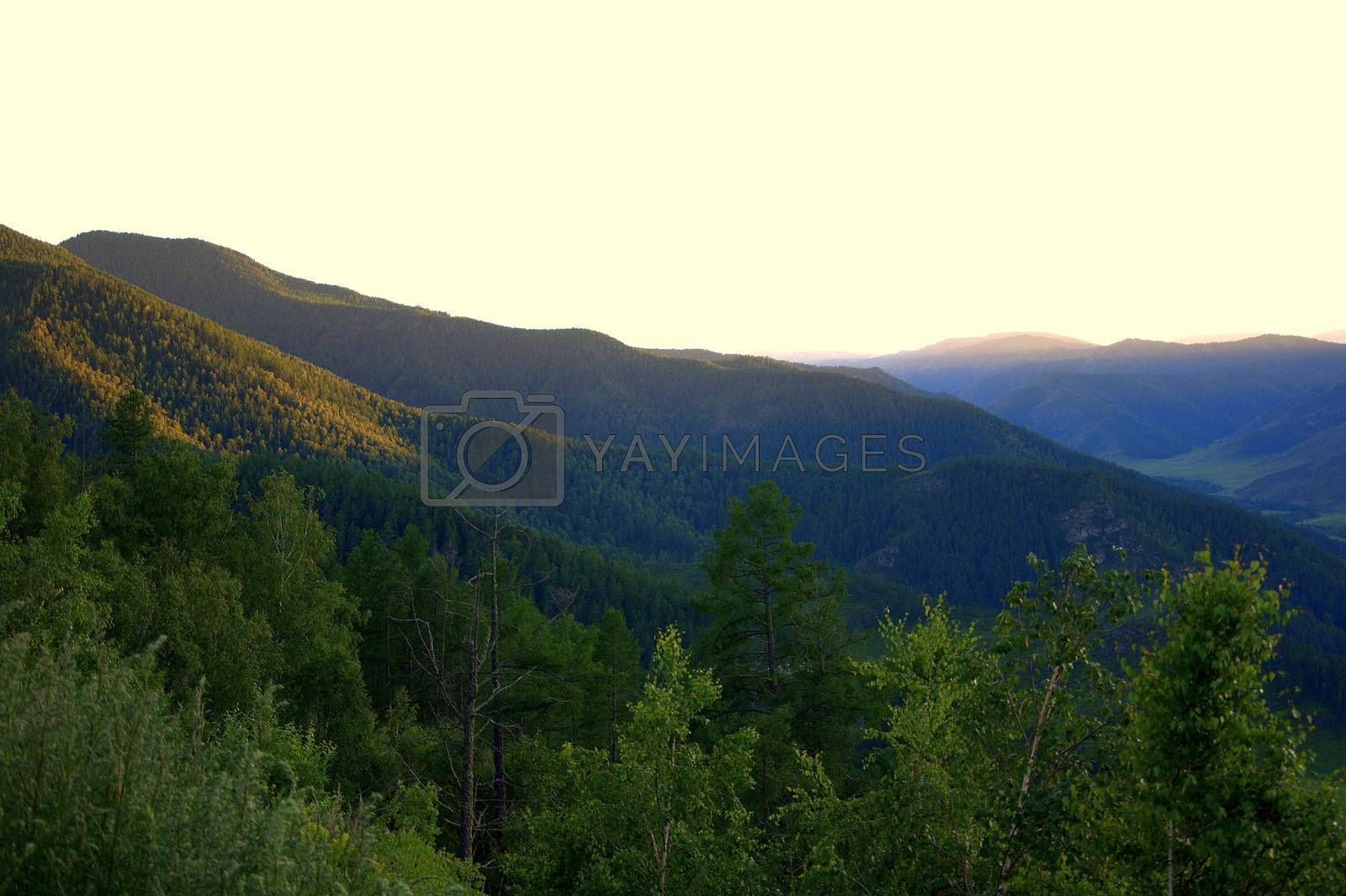 The rays of the setting sun illuminate the slopes of the mountains in orange. Altai, Siberia, Russia.
