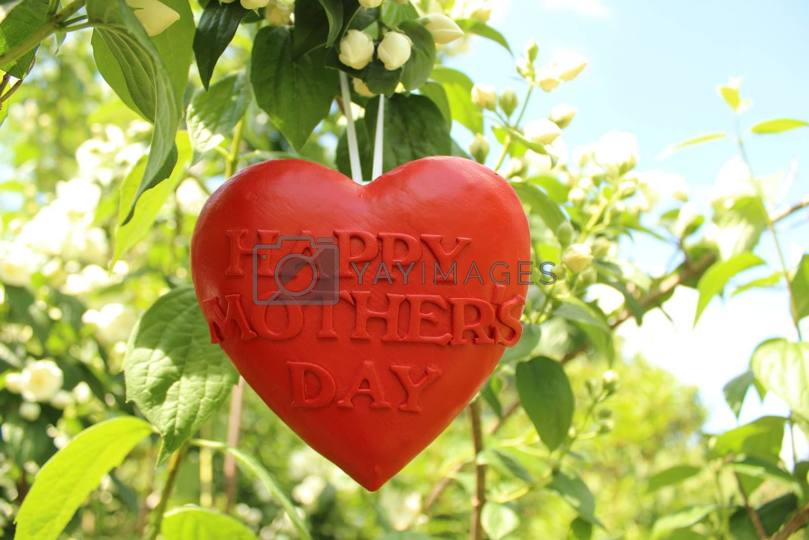 The picture shows Happy Mothers Day greetings.