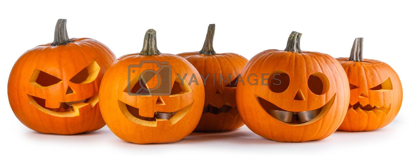 Five Halloween Pumpkins isolated on white background