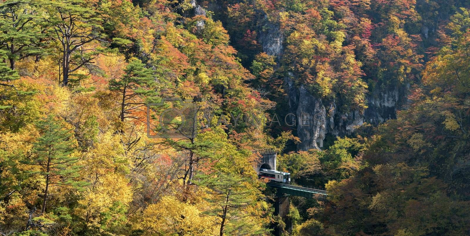 Naruko Gorge valley with train railroad tunnel in Miyagi Tohoku Japan panorama