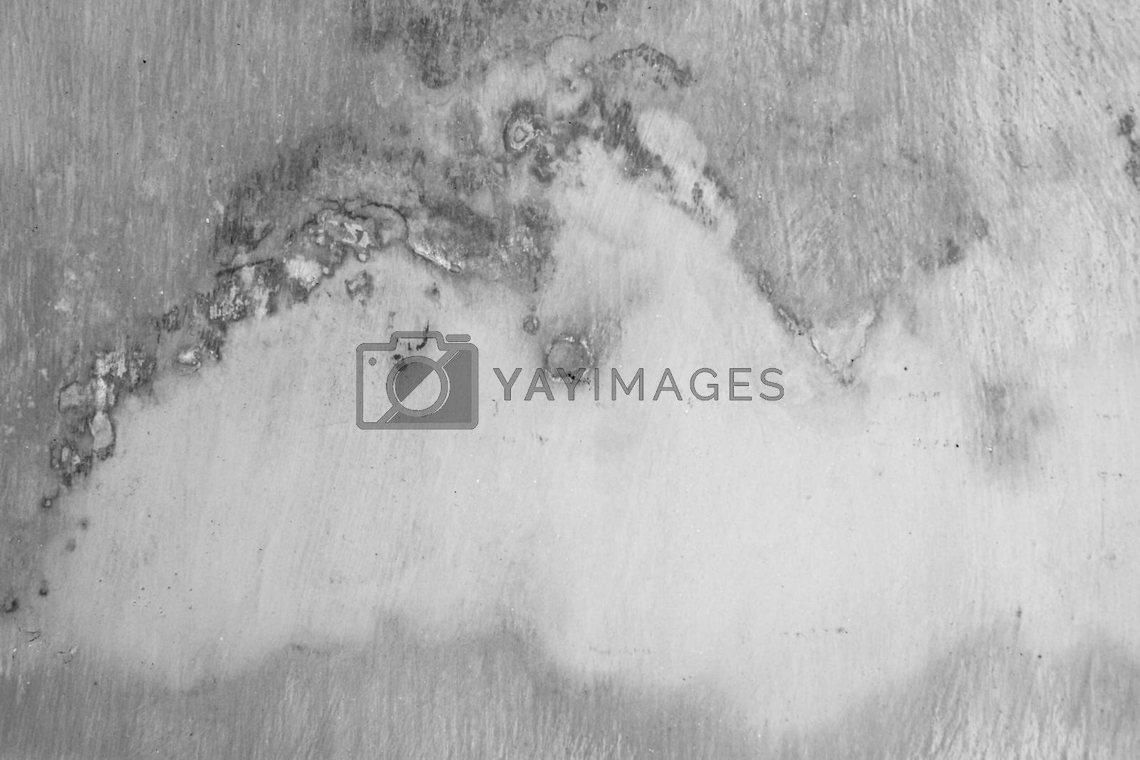 Cement wall texture background. by phalakon
