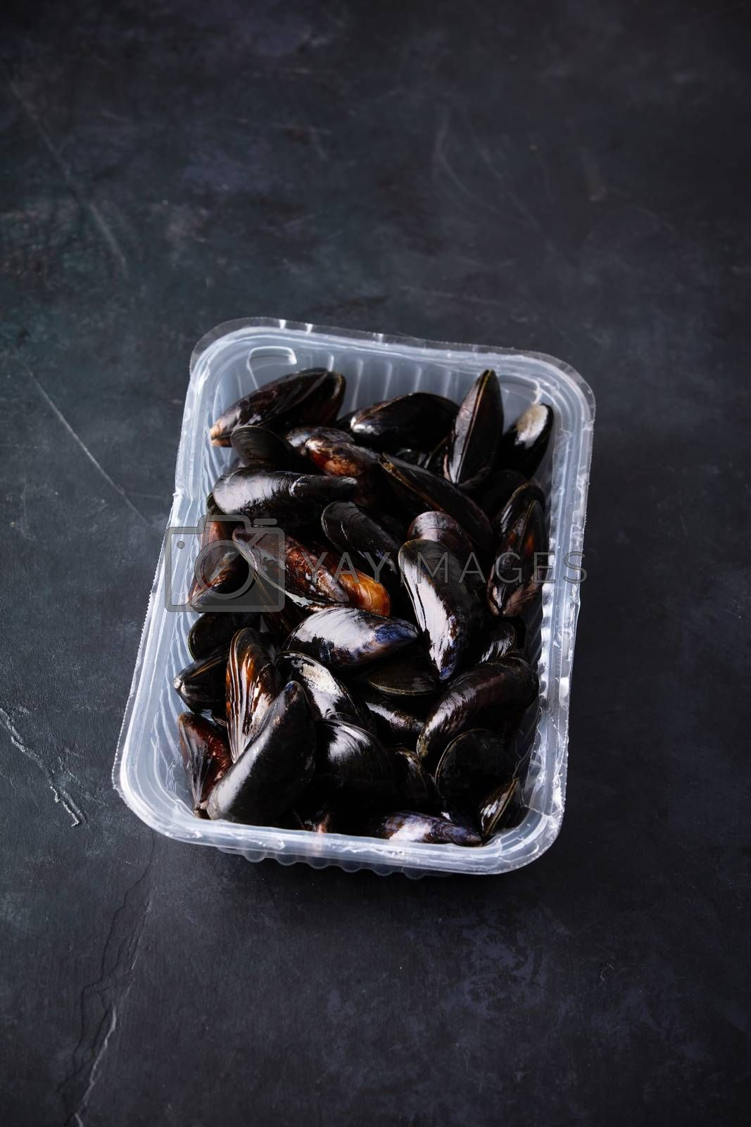 Fresh uncooked raw big mussels ready to cook on dark background