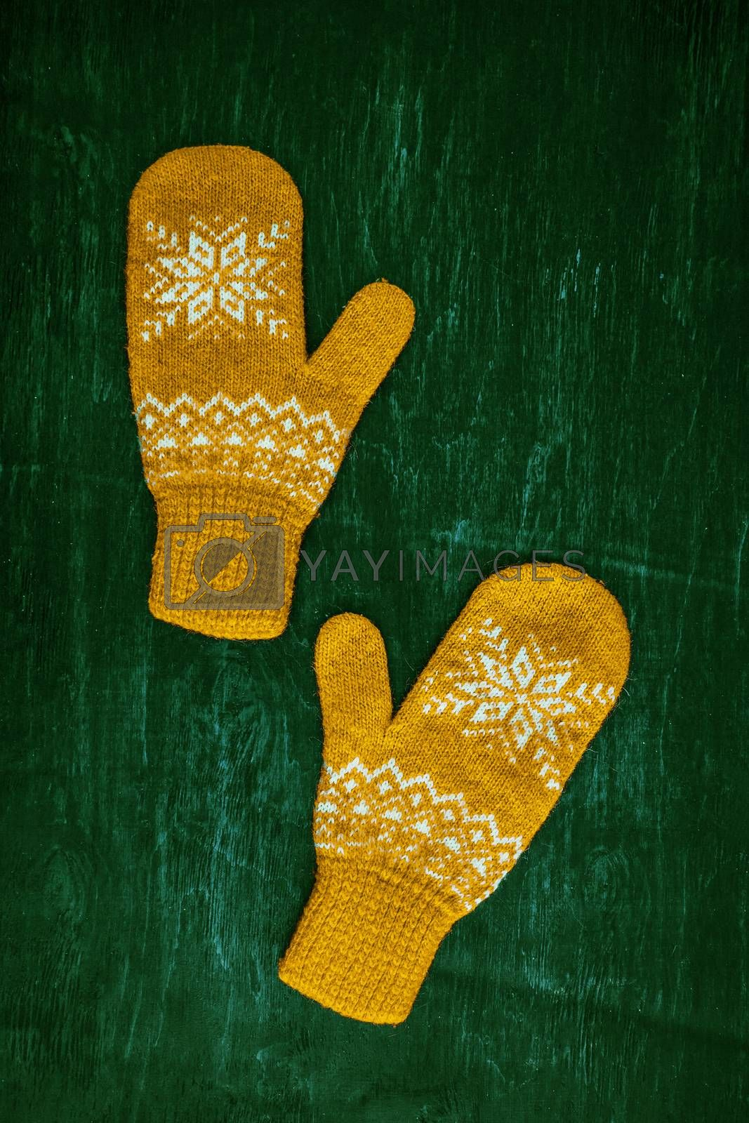 Royalty free image of a pair of yellow orange knitted mittens on a dark blue-green-brown wooden by Tanacha