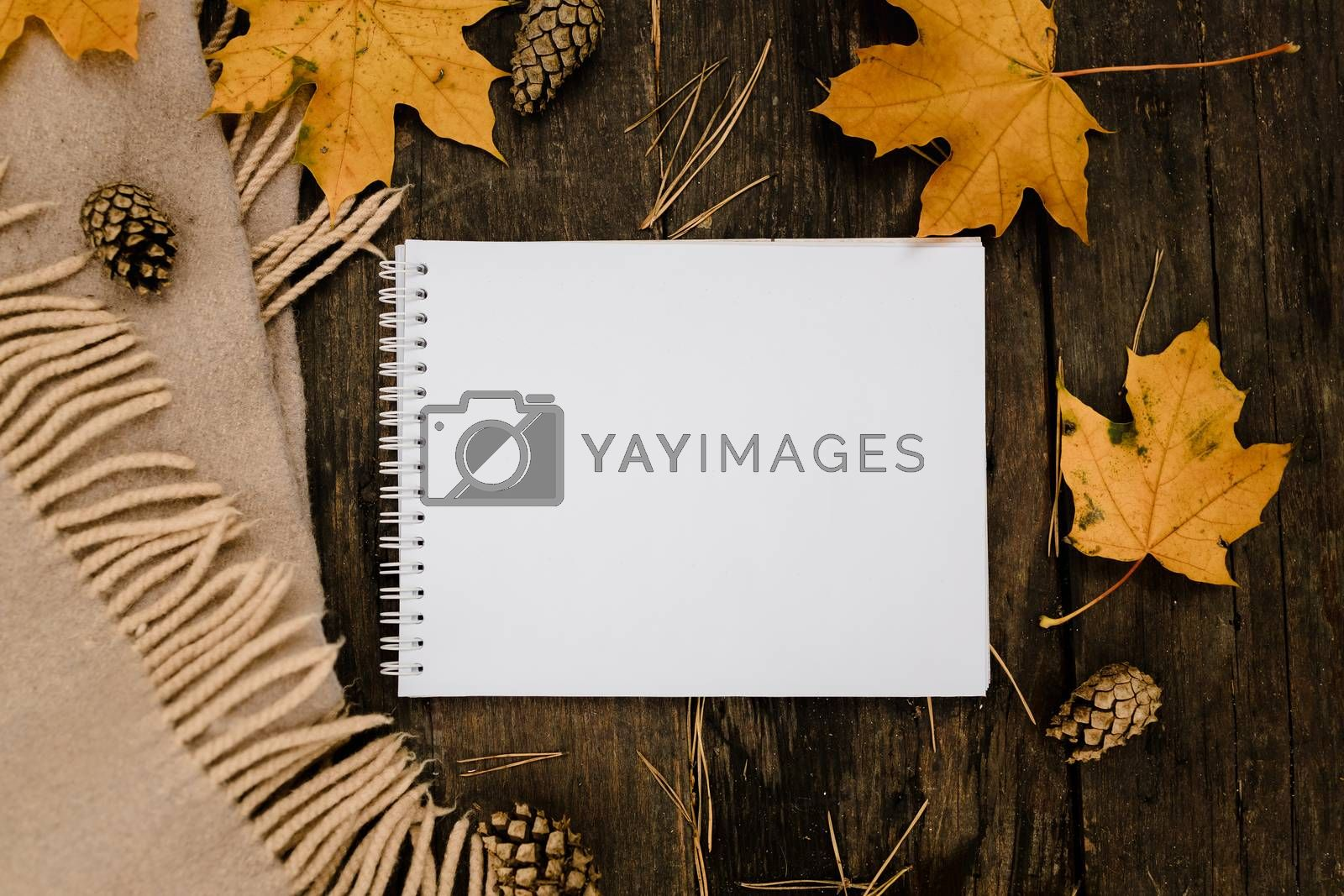 Royalty free image of White blank notebook and pen on a dark background with a scarf, plaid and a cup, autumn yellow leaves and pine cones around. View from above. flat lay, in blur. Copy space by Tanacha