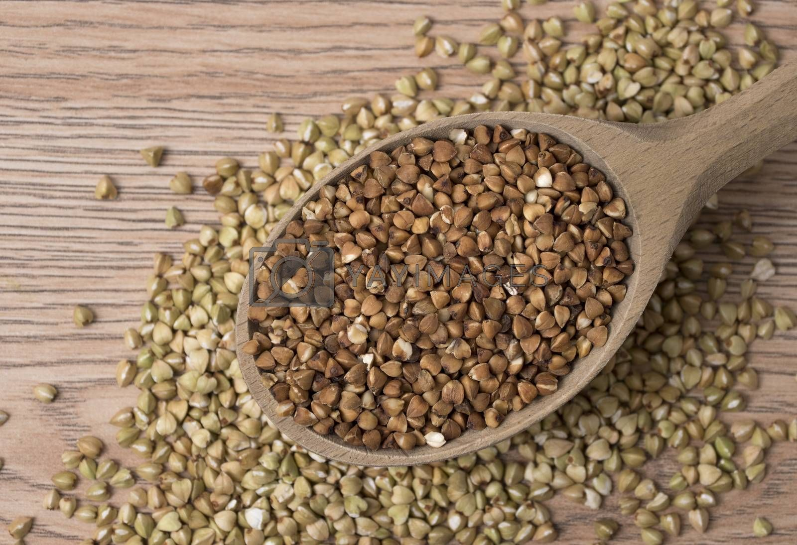 Royalty free image of Natural fresh buckwheat in wooden spoon. On a wooden table. by phortcach