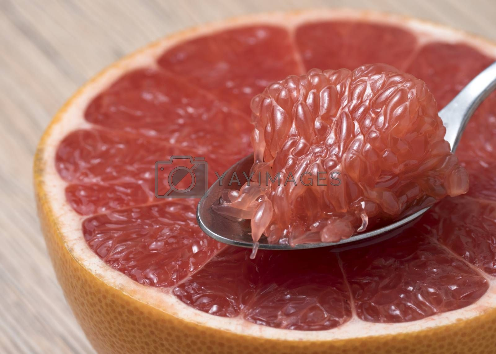 Royalty free image of Half of Juicy Ripe Red Grapefruit with slice in a spoon. by phortcach