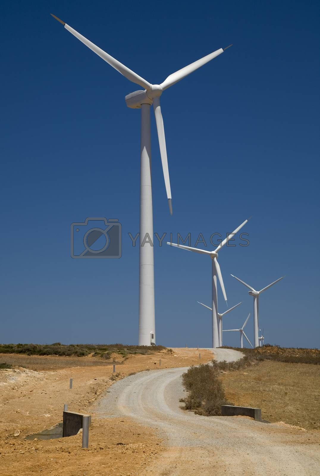 Royalty free image of wind turbines  by phortcach