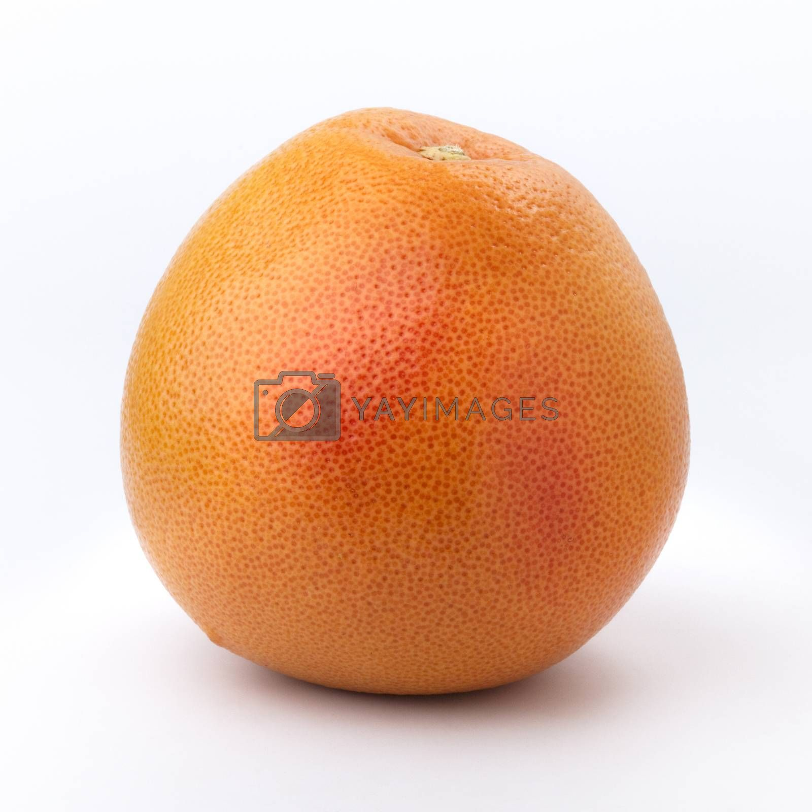 Royalty free image of Big Grapefruit by phortcach