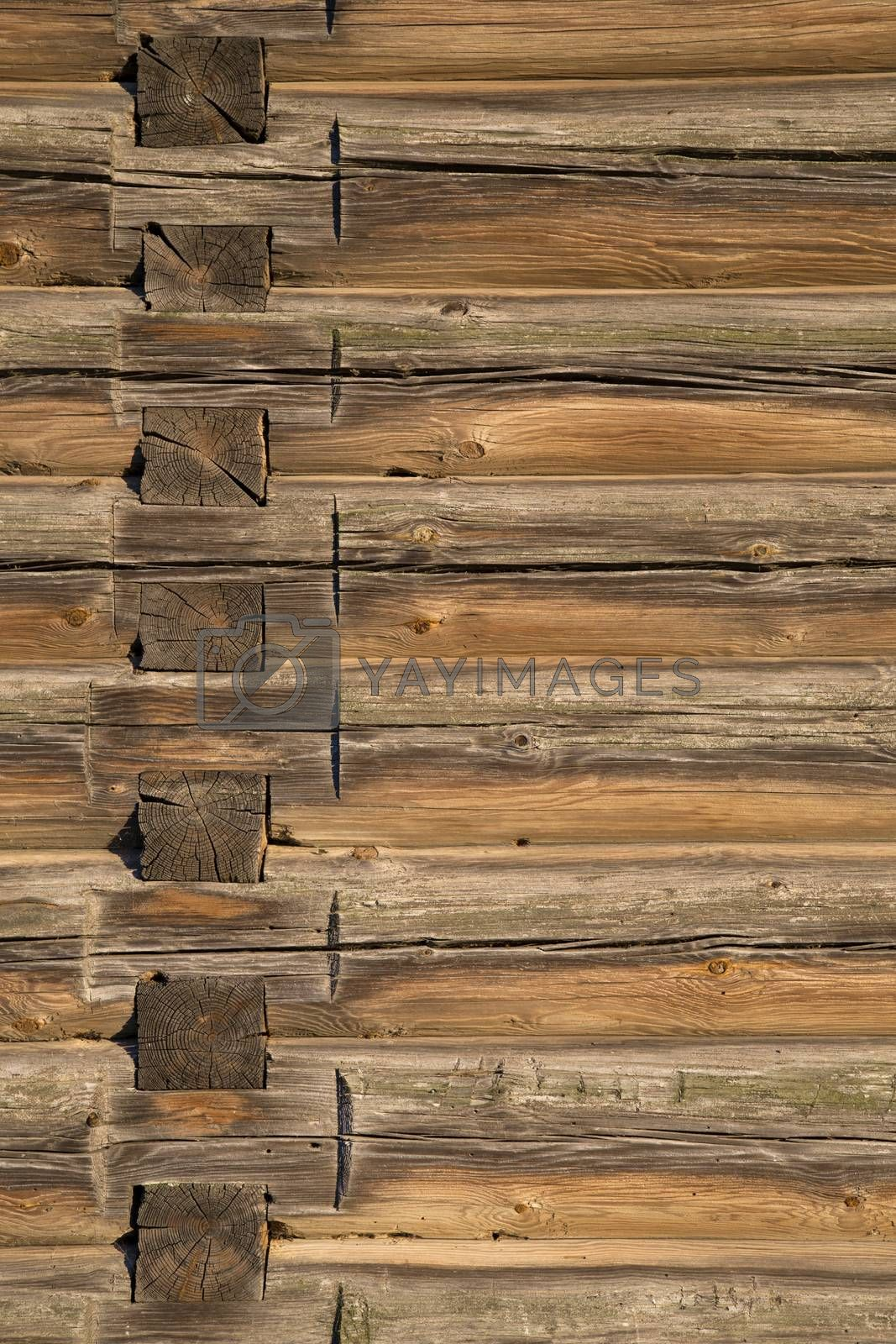 Royalty free image of Wood logs texture of an old house. by phortcach