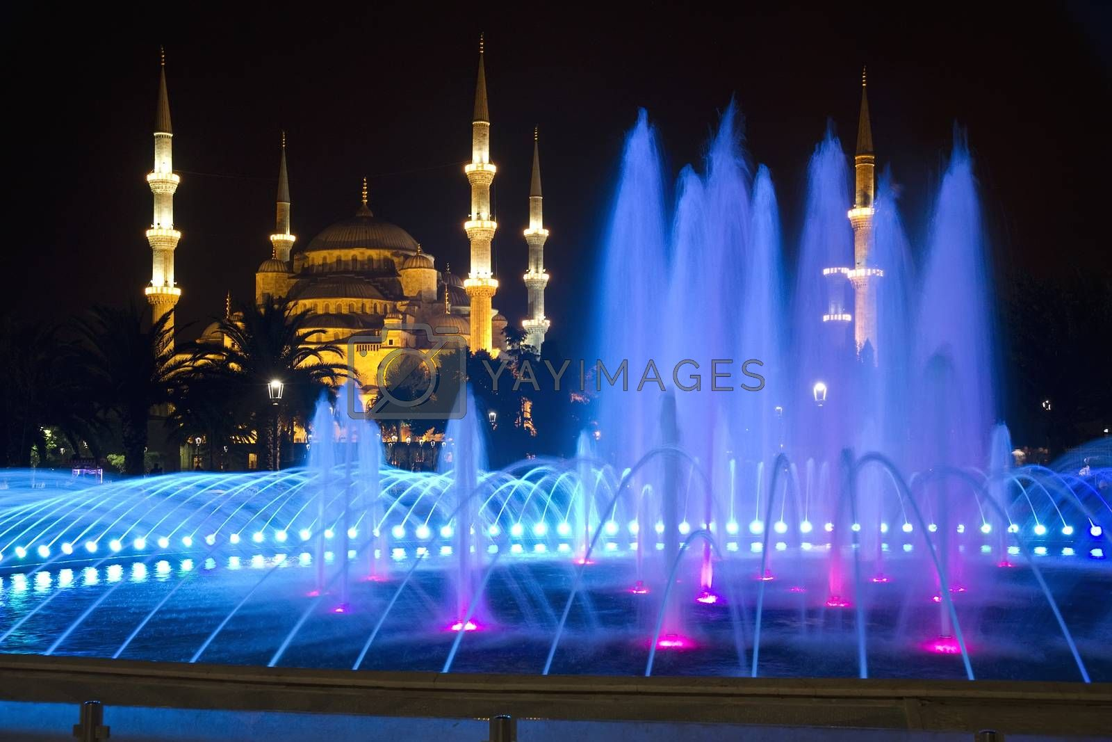 Royalty free image of Blue Mosque in Istanbul at Night by phortcach