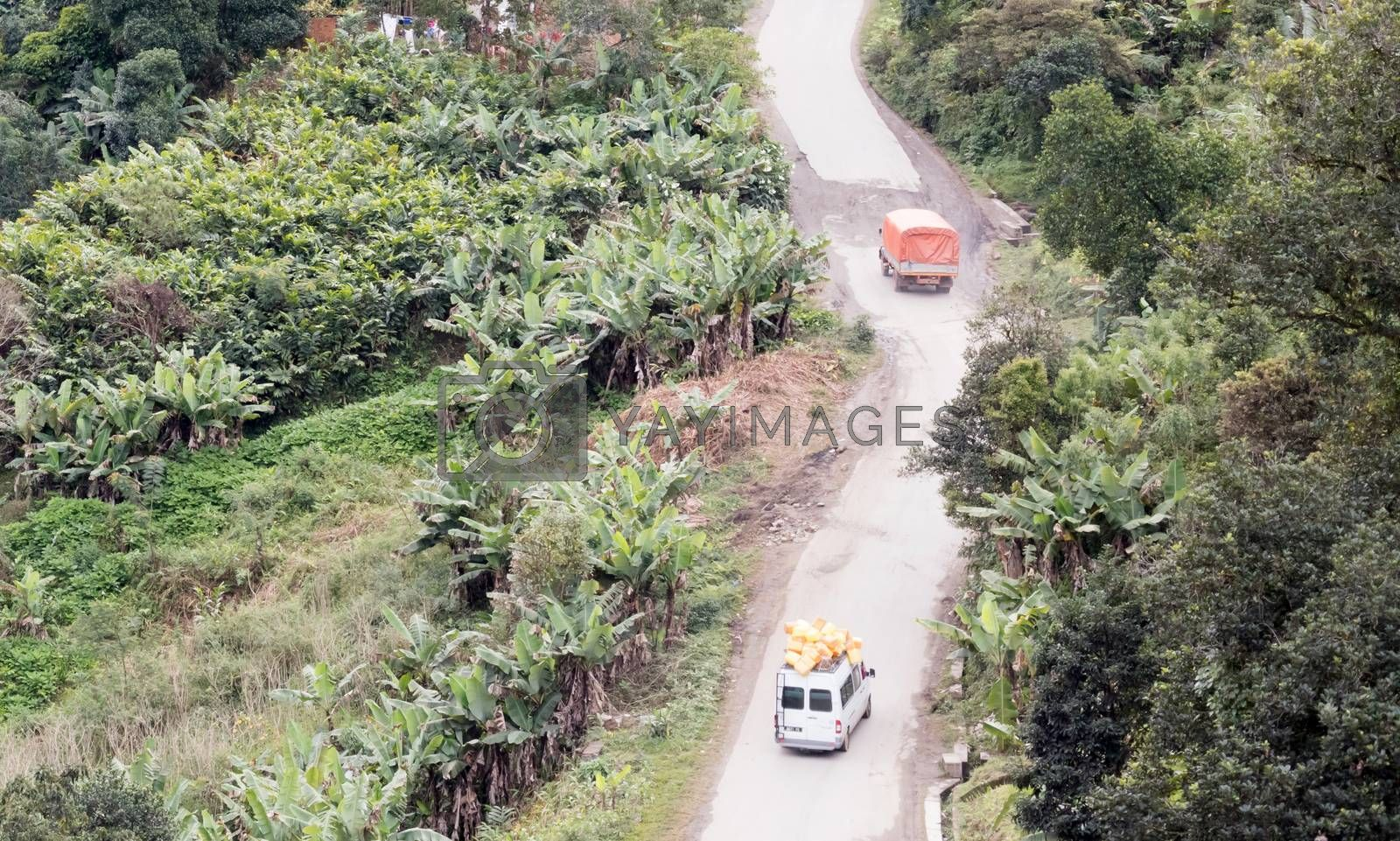 Royalty free image of Mountain road going through tropical rainforest landscape by michaklootwijk