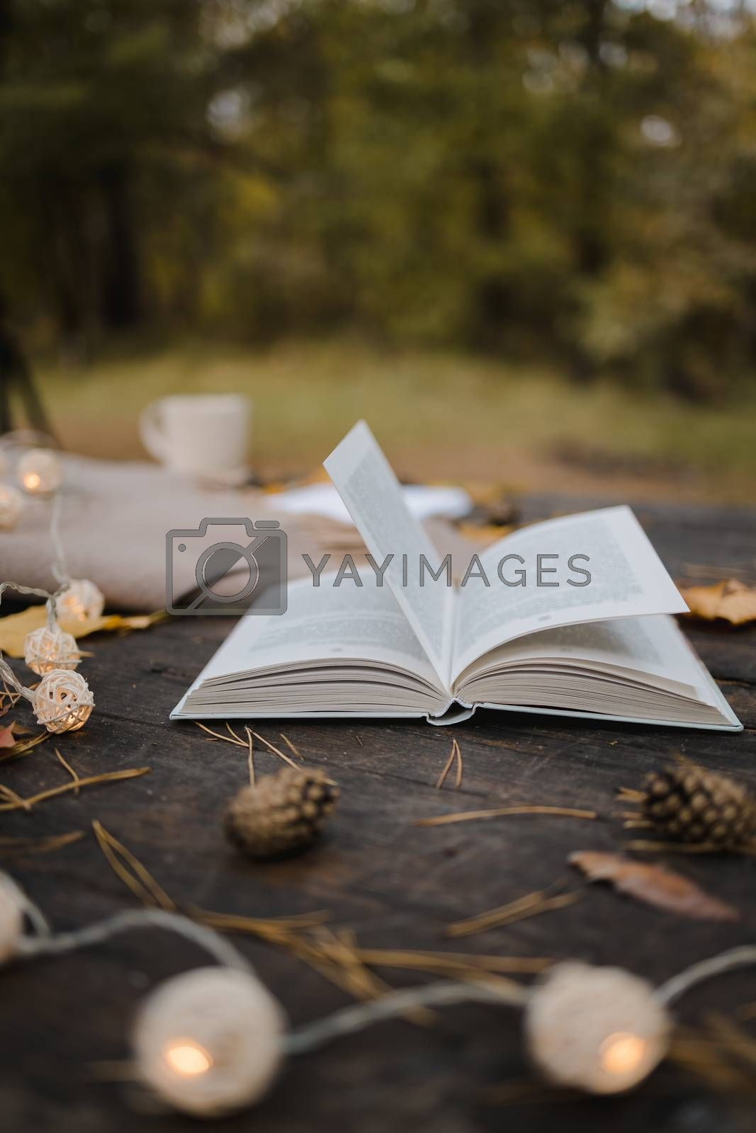 Royalty free image of On an old wooden table in an autumn park lies an open book, a plaid, a garland with lights, a cup of yellow leaves and sos cones. Top view, in blur. Autumn warm dark mood, soft focus. by Tanacha