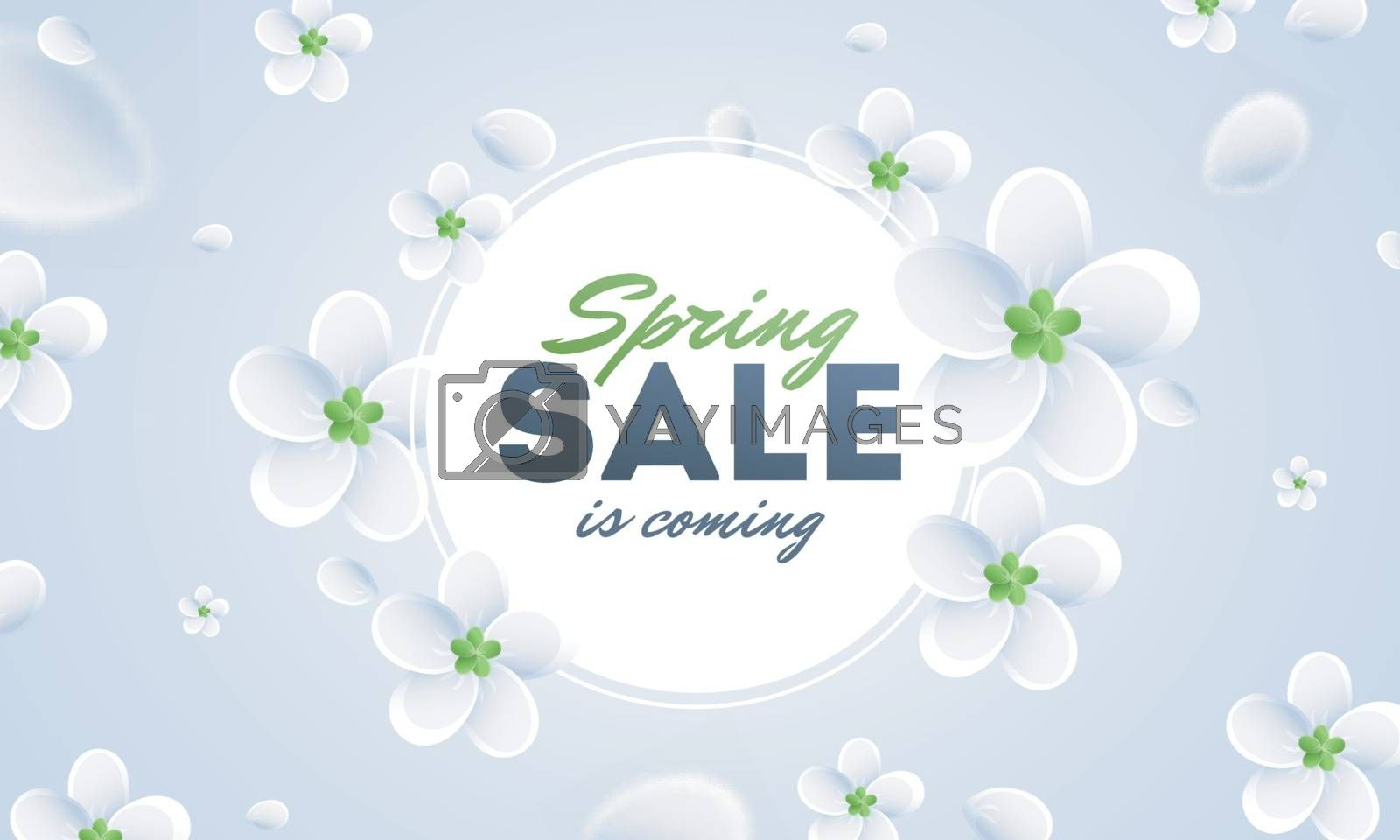 Royalty free image of Advertising poster or banner design decorated with white flowers by aispl