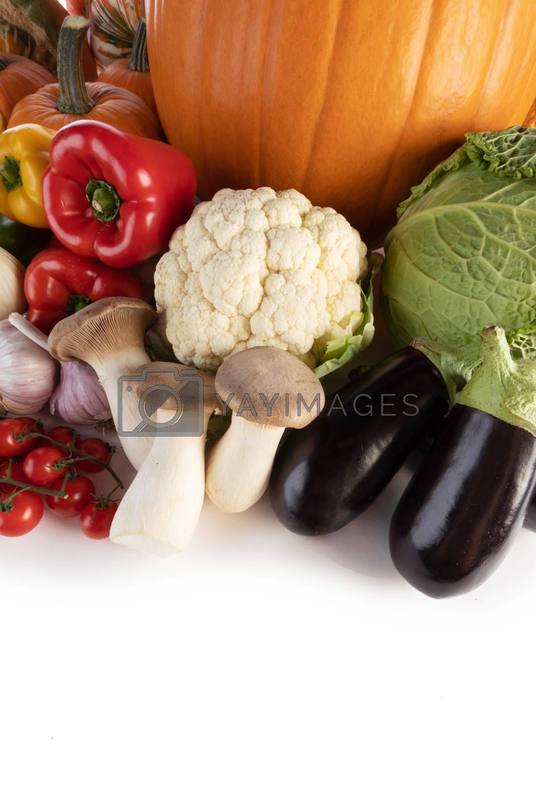 Harvest of many vegetables isolated on white background border frame with copy space for text
