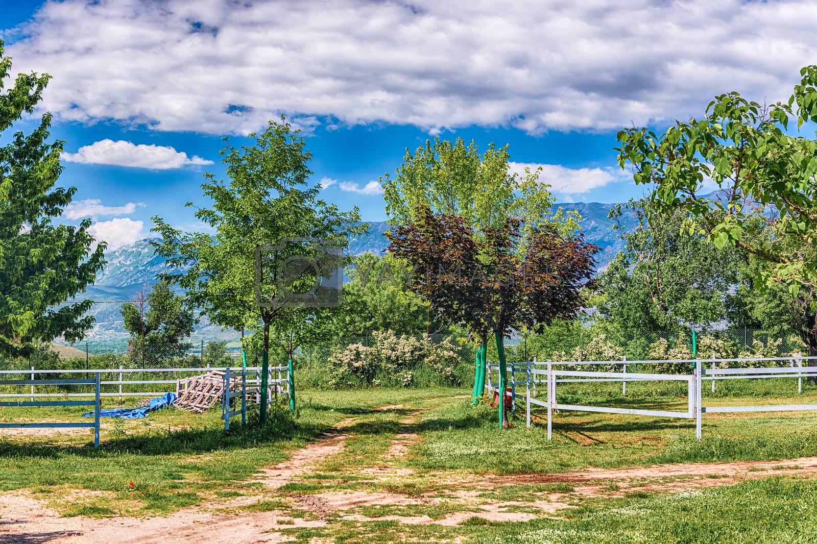 Idillic landscape in the countryside by marcorubino