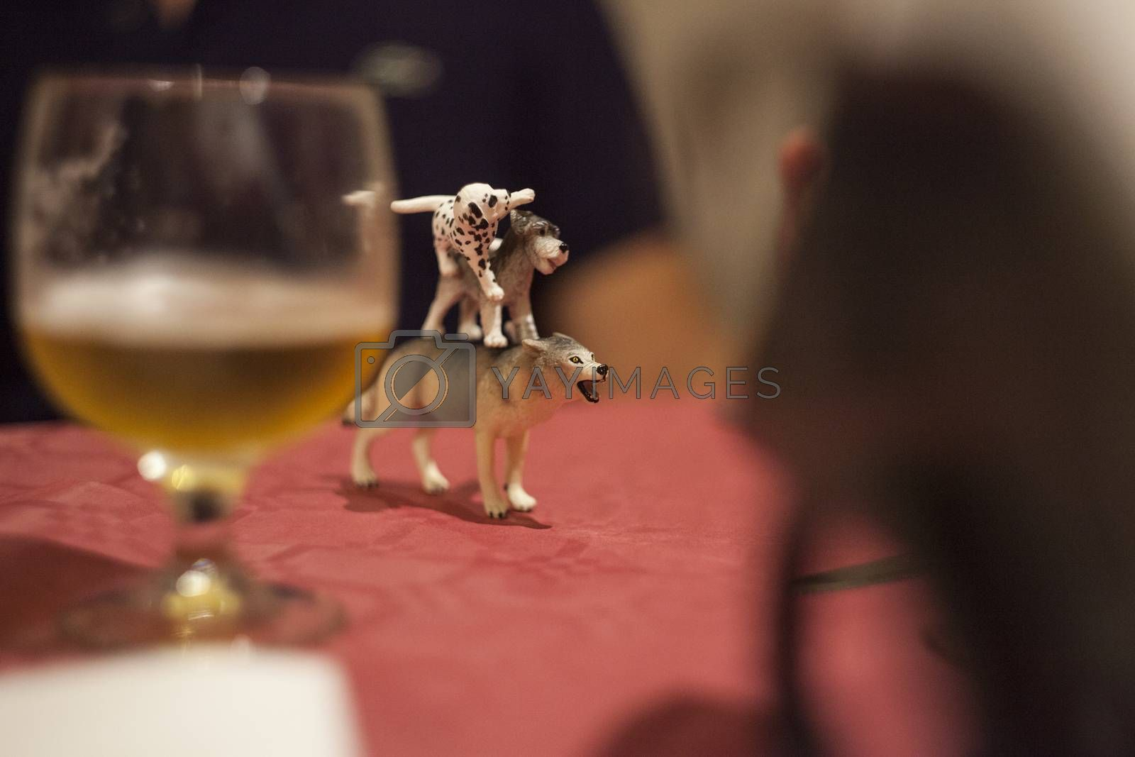 Toy animals posed in a table