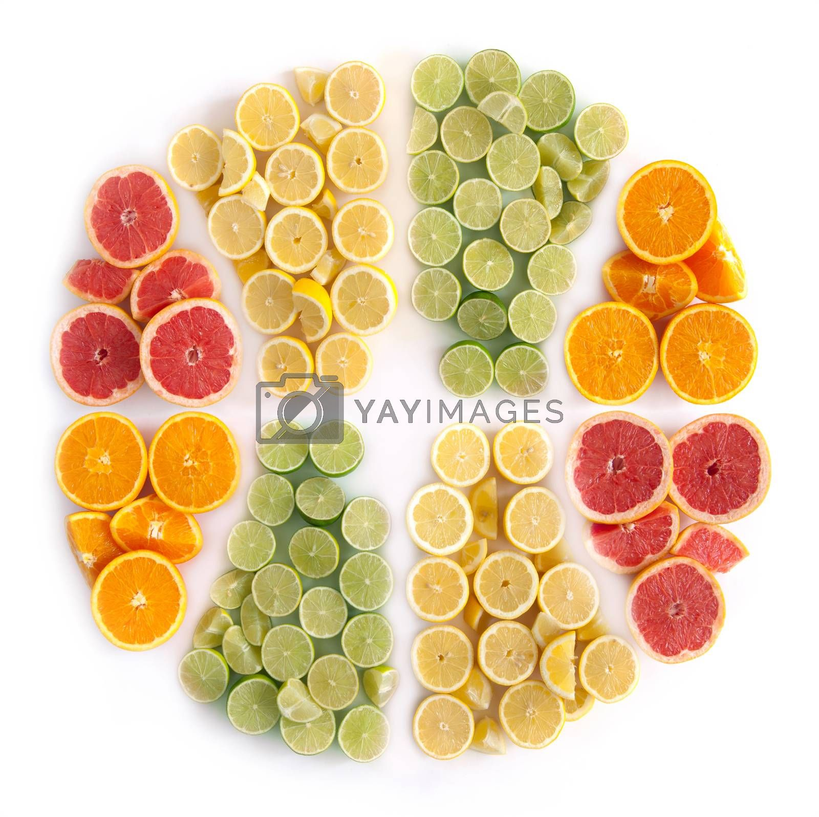 Royalty free image of Citrus fruits by unikpix
