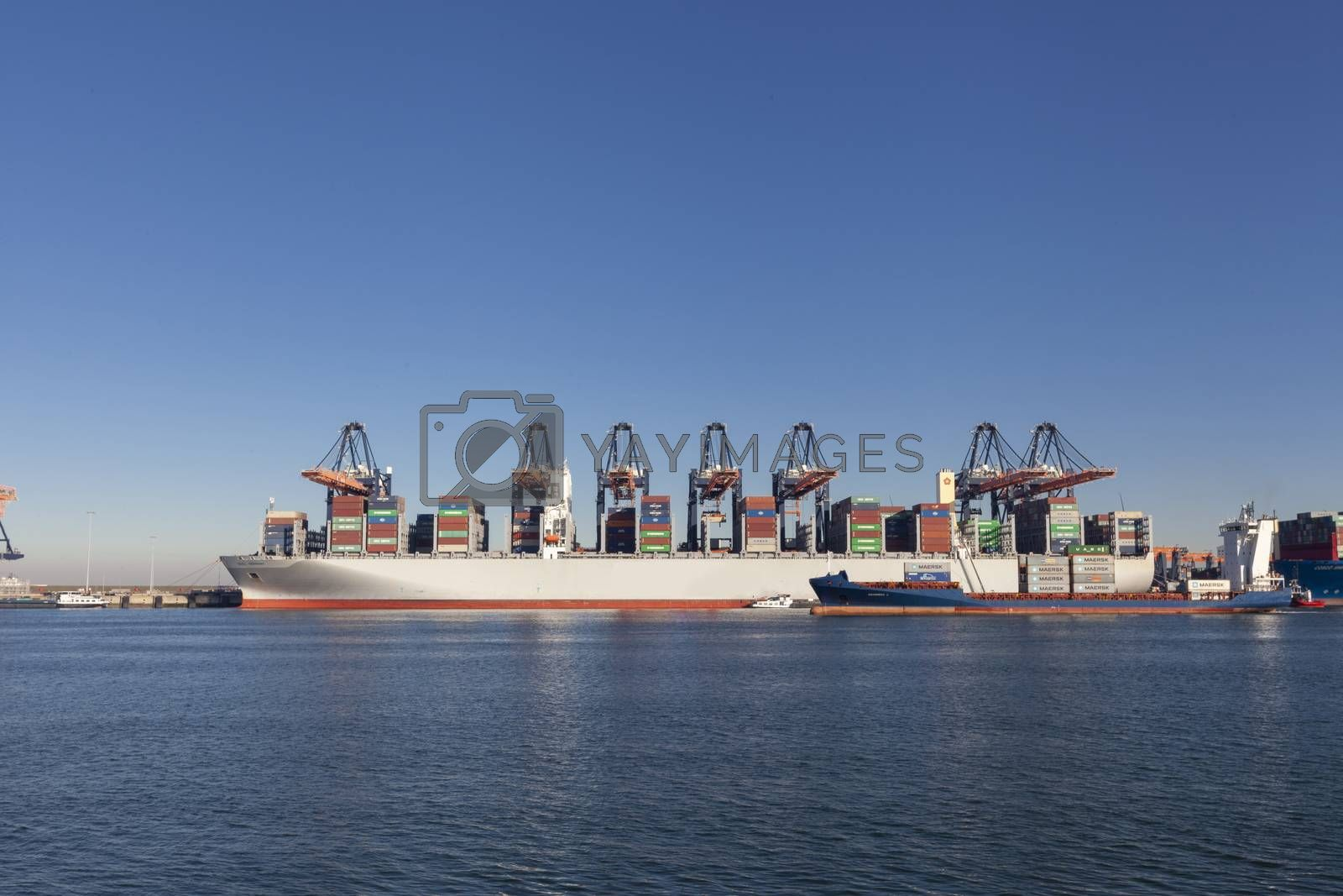 Large harbor cranes loading container ships in the port of Rotterdam, Netherlands