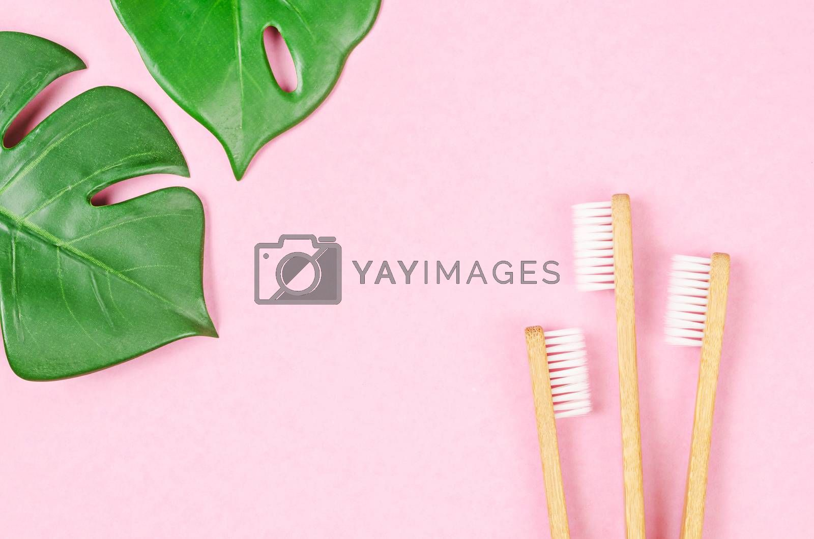 Bamboo toothbrushes and green leaves on pink background with free space for your text or message.