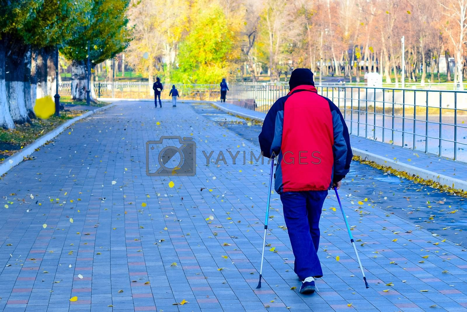 simple and sports walks in the Park in mid-autumn by alexandr_sorokin