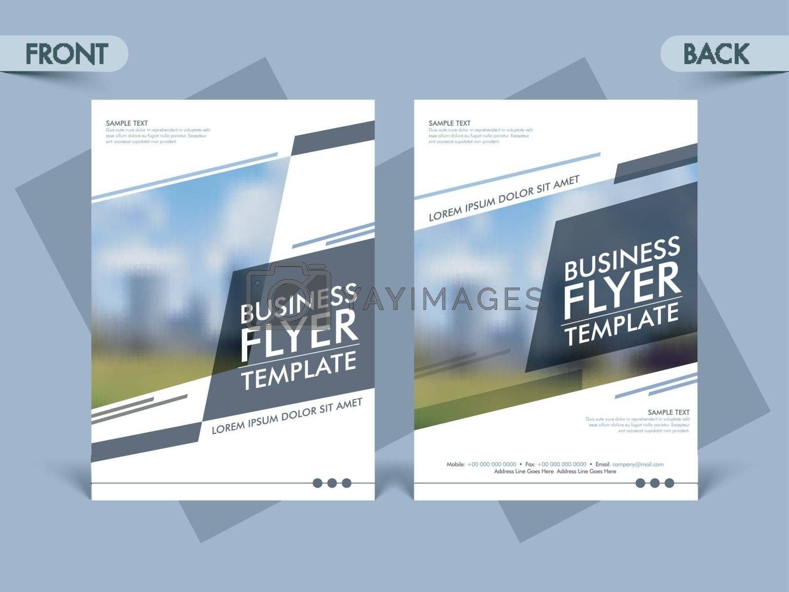 Professional business flyer, Creative template with space for image and Corporate brochure layout.