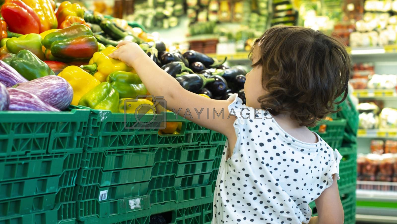 Child shopping peppers in supermarket. Concept for buying fruits and vegetables in hypermarket. Little girl hold shopping basket.