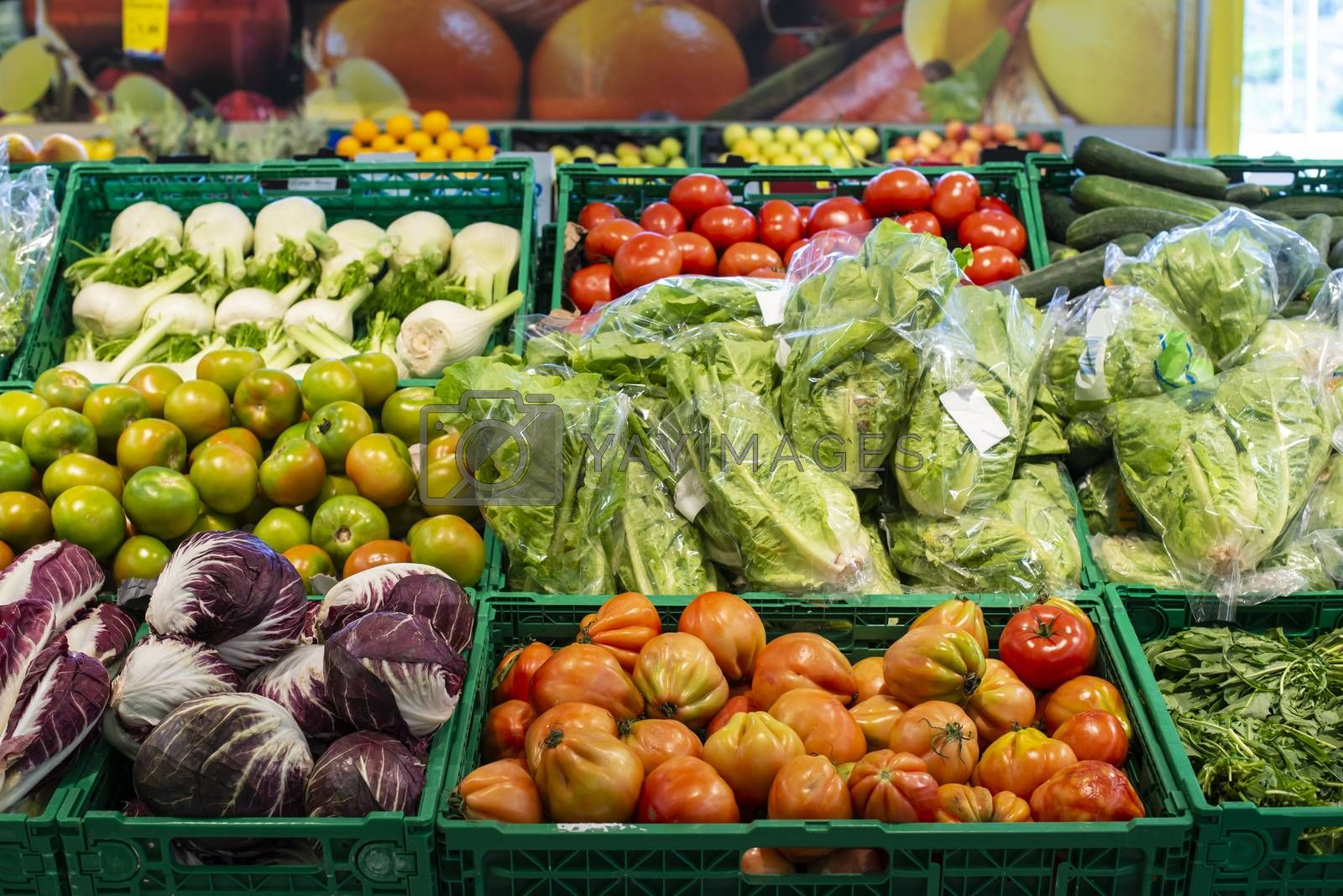 Vegetables in crates in supermarket. Arranged tomatoes, lettuce, fennel and radicchio.