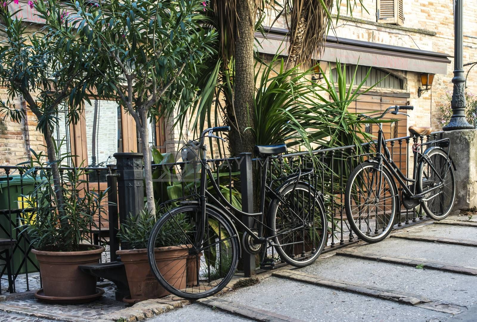 Bicycles on typical italian street. Many vintage bikes and flowers in Italy. Various colours bicycles on a small paved street. Pots with green decorative flowers. Concept for italian spirit.