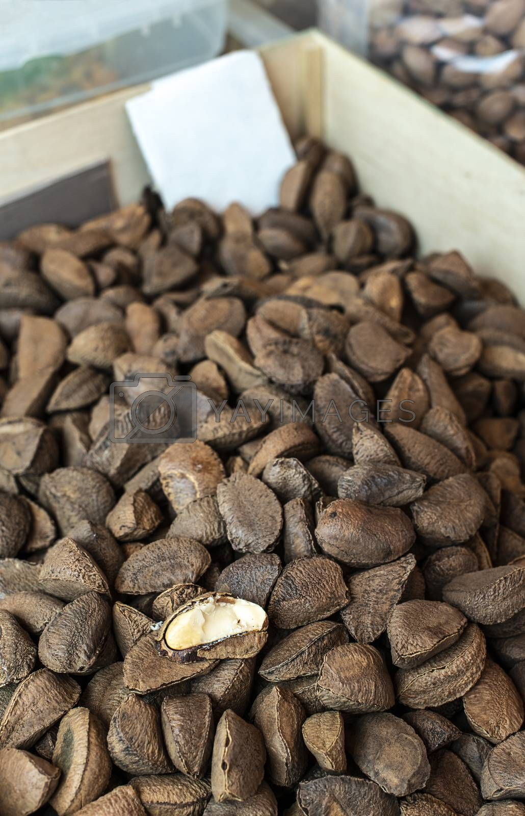 Brazilian nuts on the market. Brazilian nuts with shells.