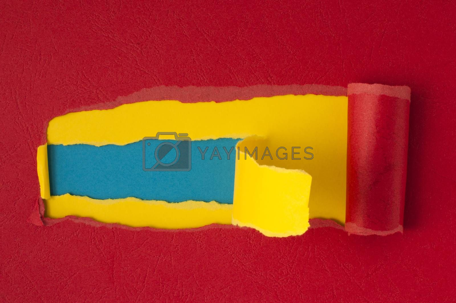 Red torn paper with blue space for text or other content