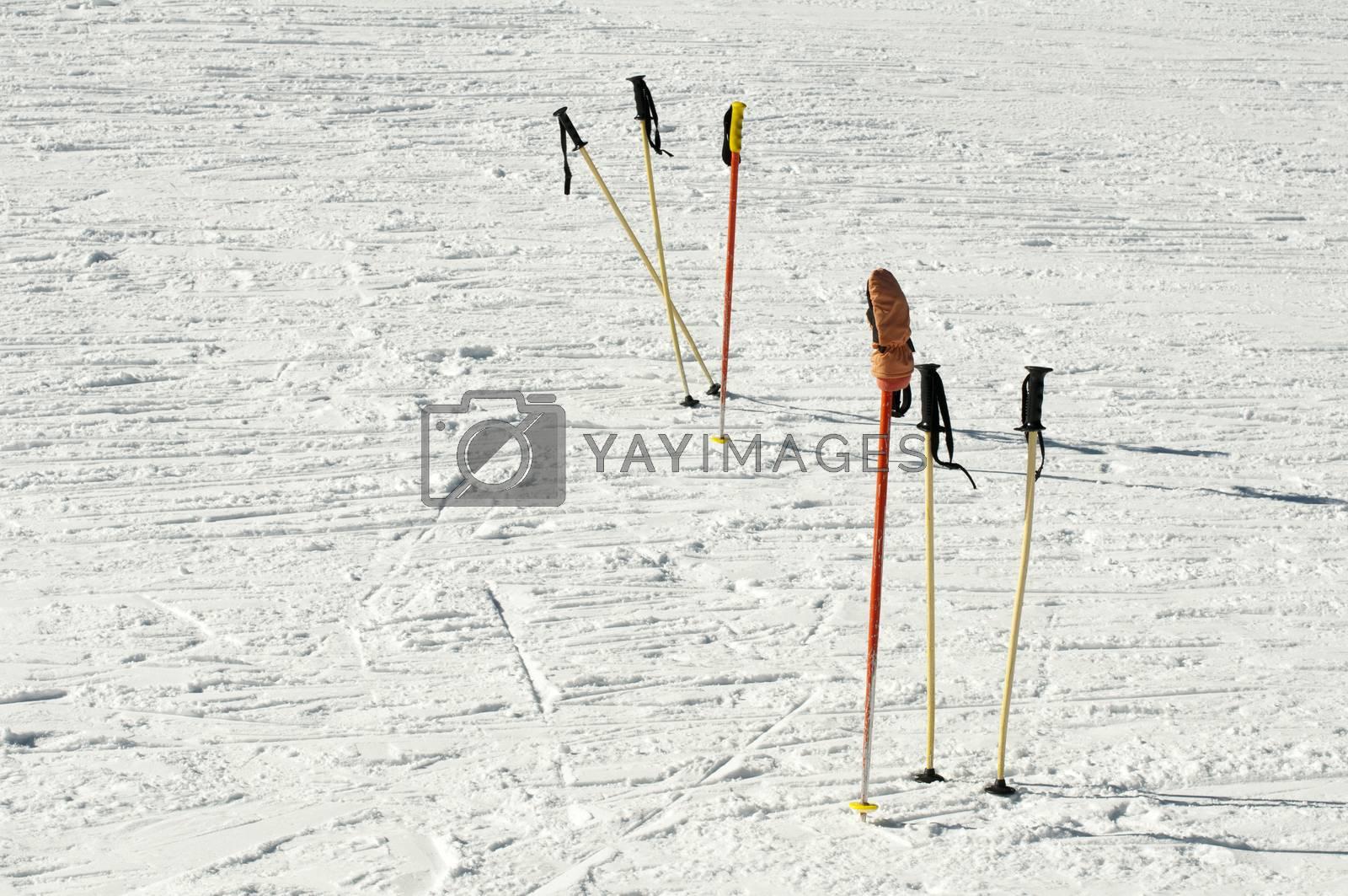 Ski poles by deyan_georgiev