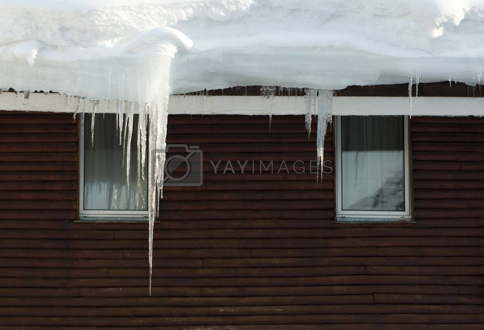 Icicles on window. Wooden house windows