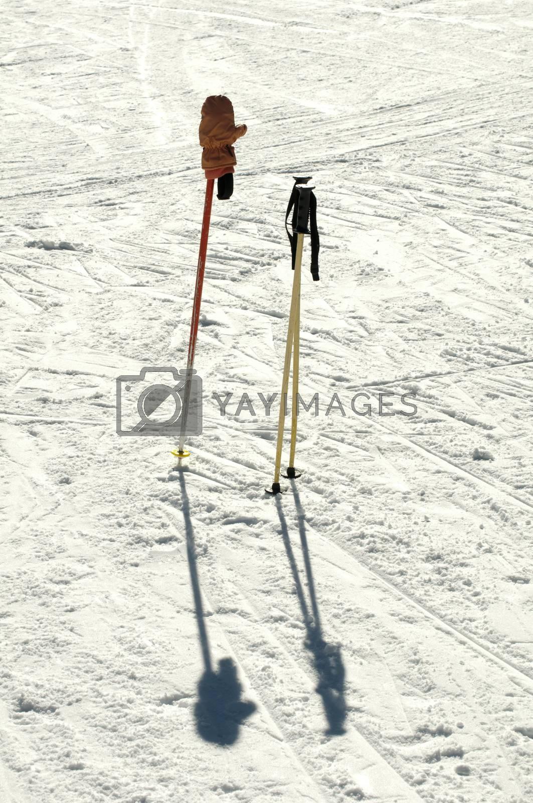 Ski poles stuck in the snow