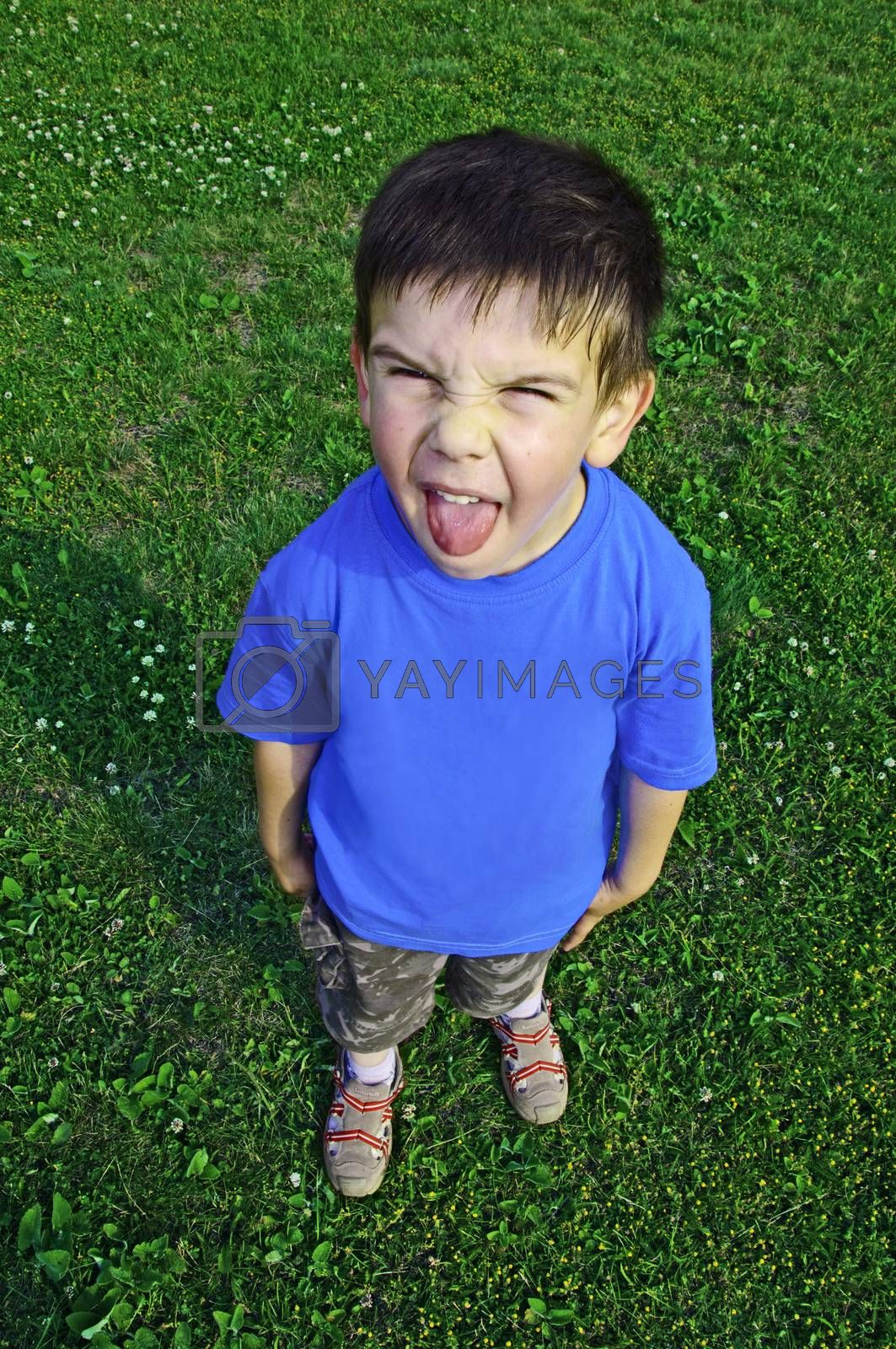 Young boy tongue sticking on green meadow