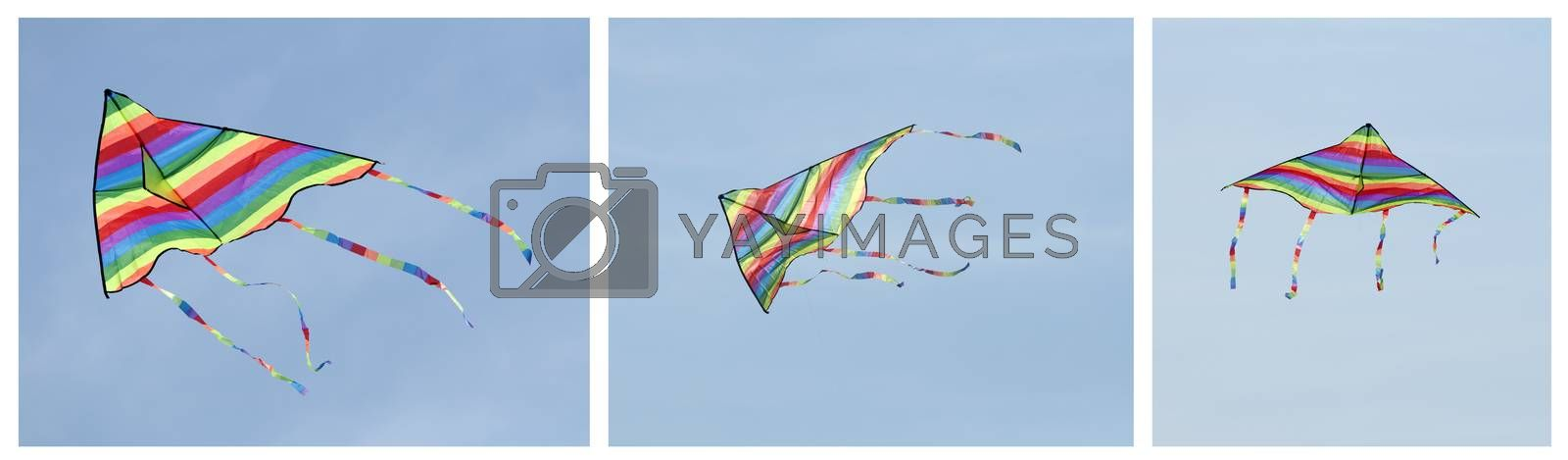 Multicolored kite on blue sky background. Tree images
