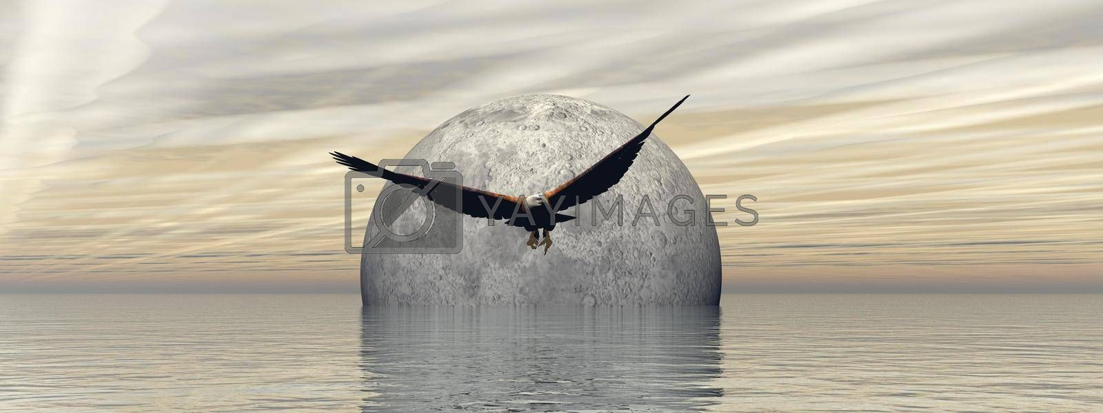 flying an eagle with a beautiful full moon landscape - 3d rendering by mariephotos
