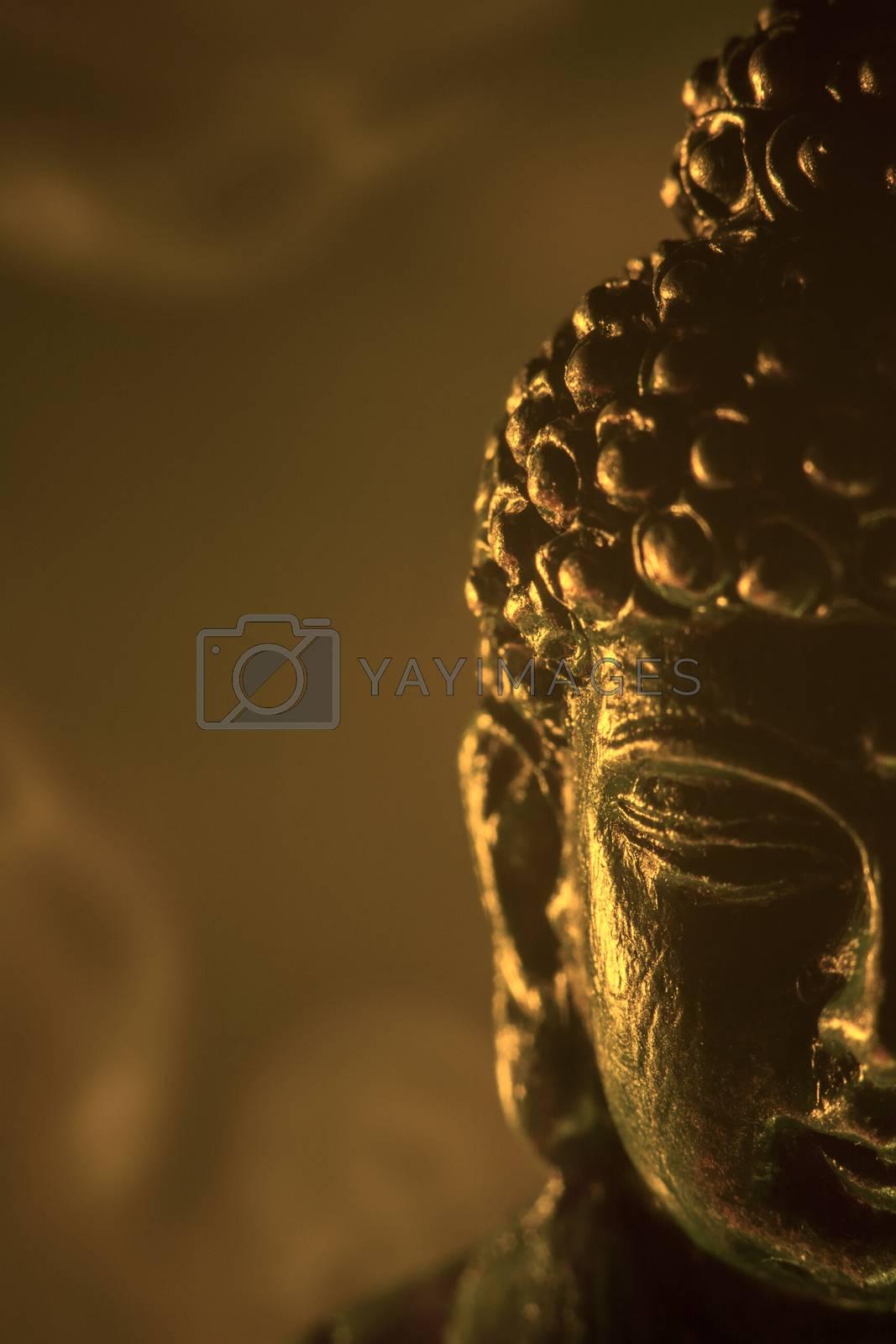 Buddha by SFPater